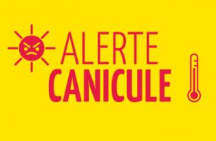 Caniculearton2935-6f81b